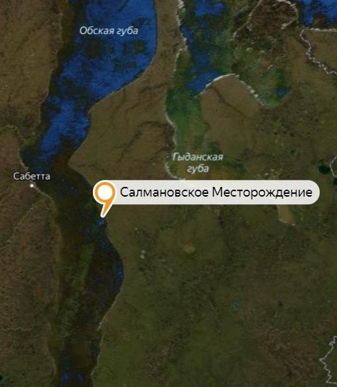 Салмановское месторождение на карте